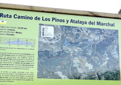 Ruta Camino de los Pinos.